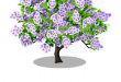خریدار چوب درخت پالونیا